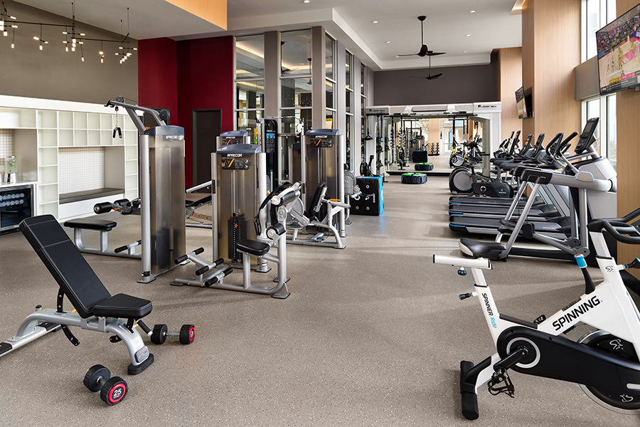 Fitness center with weight machines, free weights, cardio machines, tall windows with natural light, and TVs.