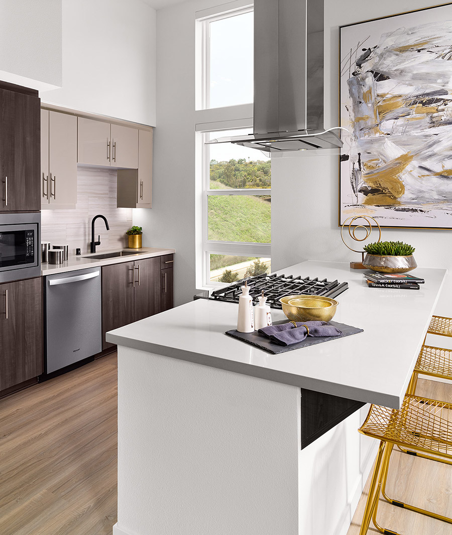Kitchen with wood style flooring, quartz counters, stainless steel appliances and exhaust hood, and large window.